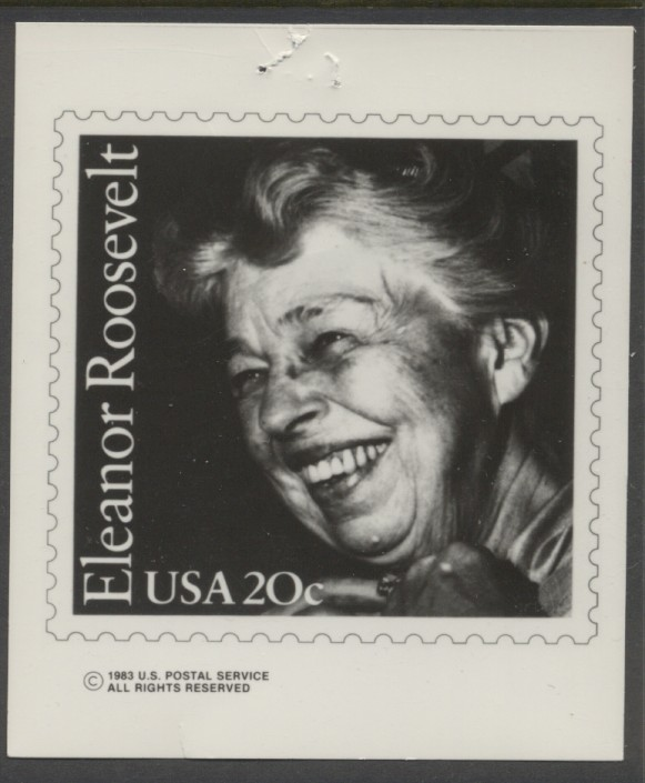 Eleanor roosevelt essay topics